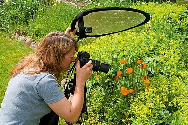 Hướng dẫn cách chụp macro đẹp