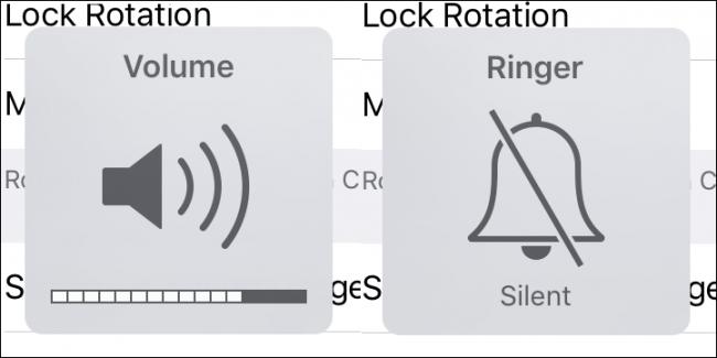 Màn hình cho thấy trạng thái Mute được chọn khi thiết lập với Switch.