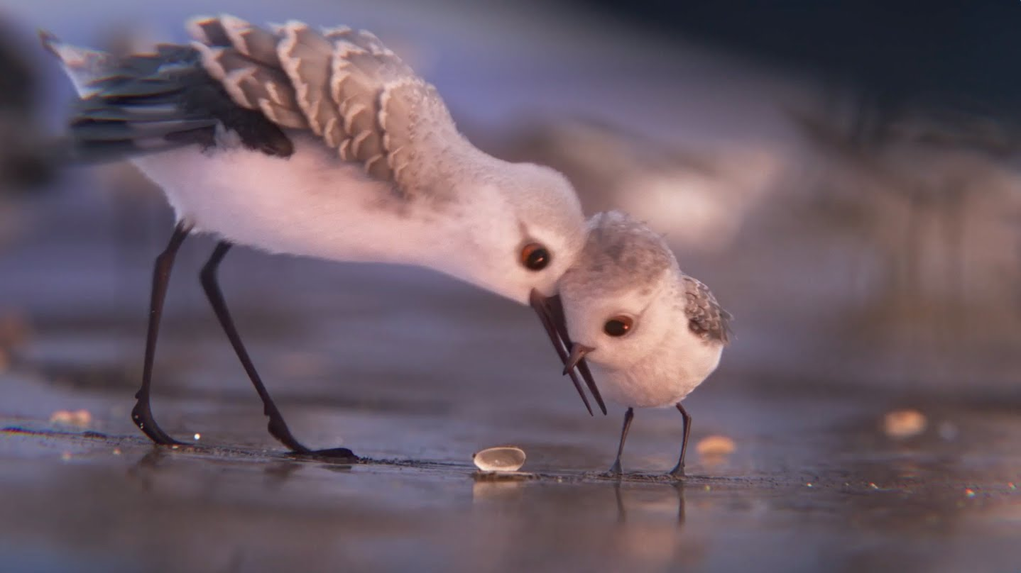 phim ngan piper pixar - Piper: Phim ngắn tuyệt vời của Pixar