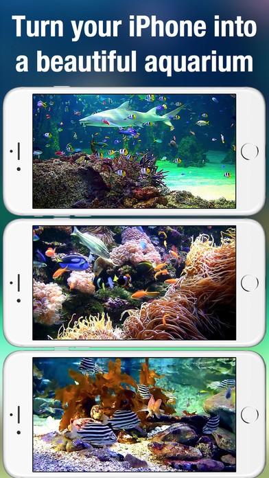aquarium-live-ios