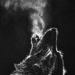 wolf 150x150 - Tải miễn phí 11 hình nền điện thoại iOS và Android đẹp ngày 28.8