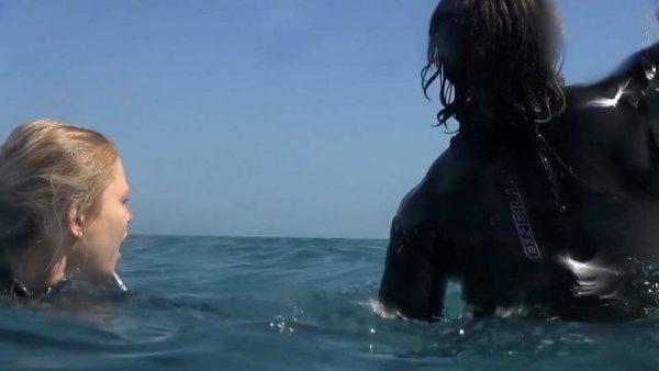 Mồi cá mập screencap