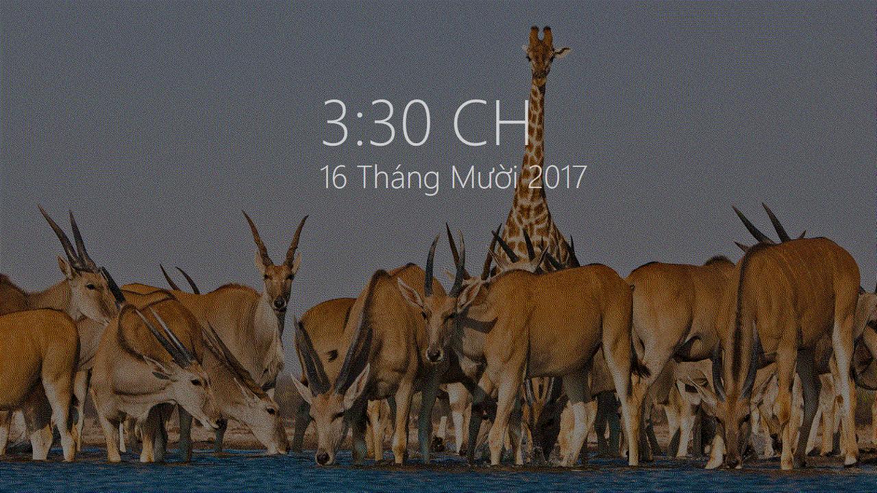 Modern Glance - Tổng hợp 8 ứng dụng UWP hay nhất nửa cuối tháng 10/2017