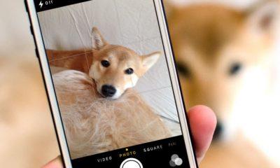 image grid 1 400x240 - Bật khung lưới khi chụp ảnh trên iPhone