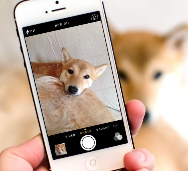 image grid 1 - Bật khung lưới khi chụp ảnh trên iPhone