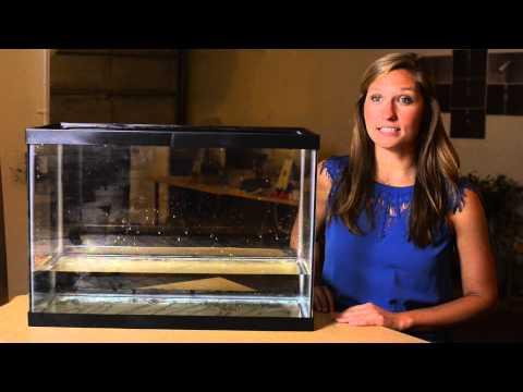 Nebia - Nhìn qua dự án phát triển vòi sen giúp tiết kiệm 70% nước