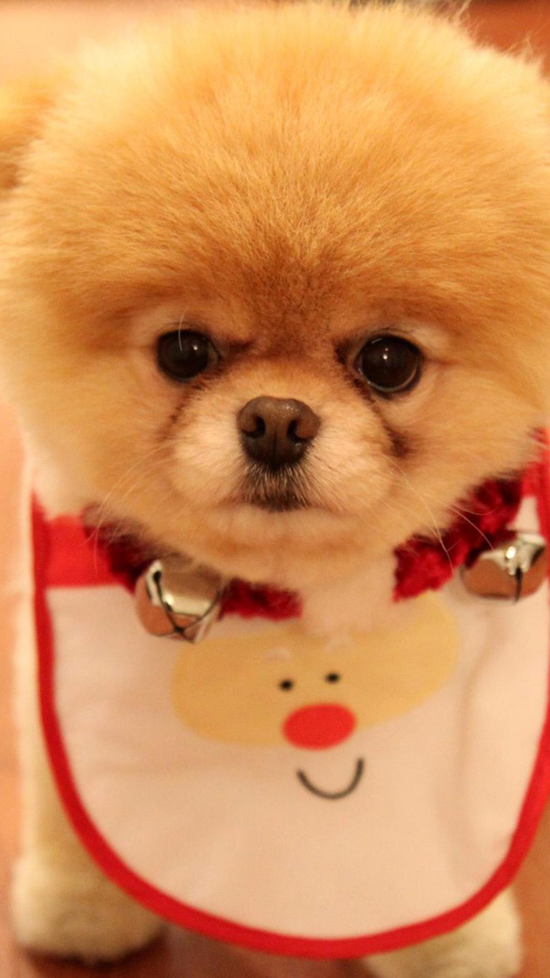 christmas 37 - 50 ảnh nền Giáng Sinh cực dễ thương cho điện thoại