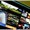 flickr featured 100x100 - Hướng dẫn quản lý và tải ảnh lên FlickR dễ dàng trên máy tính