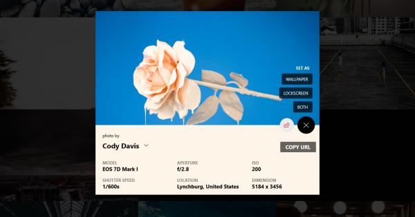 Ứng dụng tải ảnh chất lượng cao Unsplash trên máy tính Windows 10 1