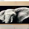 rsz easy media player 100x100 - Phần mềm xem video tốt trên máy tính thay thế VLC, hỗ trợ YouTube