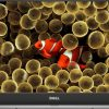 desktop wallpaper 2 featured 100x100 - Tải miễn phí 40 ảnh nền đại dương được bình chọn đẹp cho máy tính