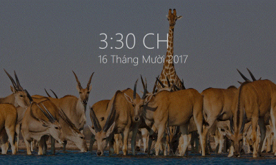 Modern Glance 400x240 - Cách làm màn hình chờ Win 10 dạng Glance trên Lumia
