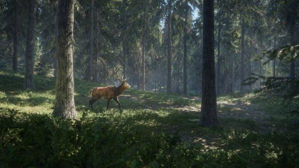 theHunter: Call of the Wild screenshot