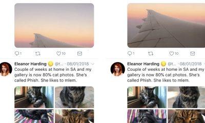 """twitter auto crop featured 400x240 - Twitter dùng trí tuệ nhân tạo để crop hình """"hút mắt"""" người xem"""