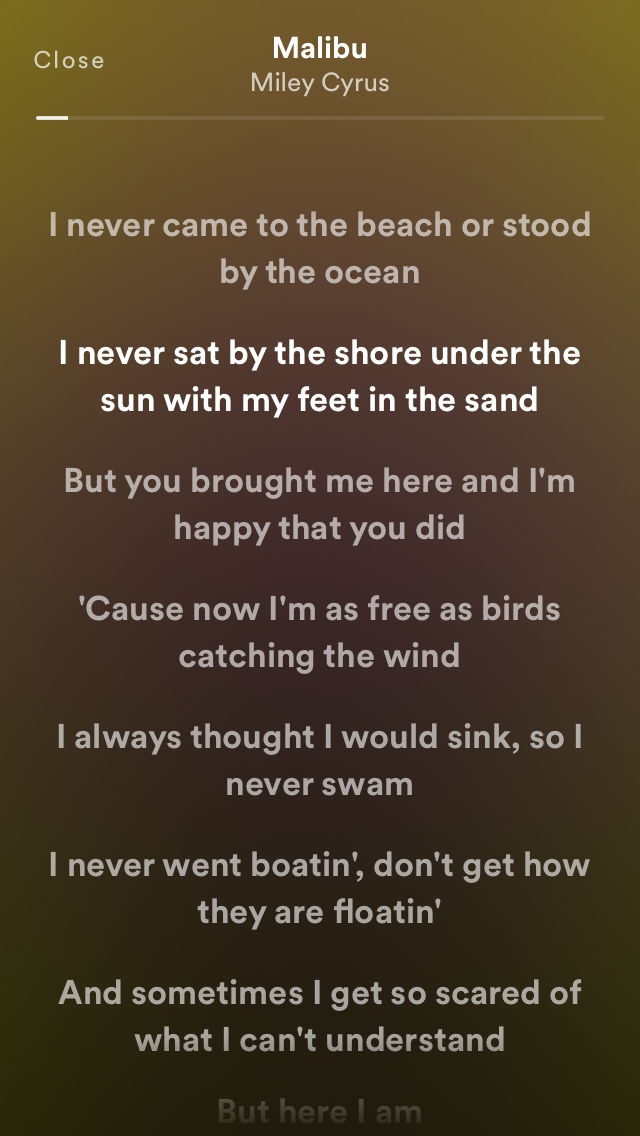 IMG 0353 - Cách bật lời bài hát trên Spotify