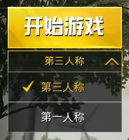 PUBG Mobile Chinese FPP only mode