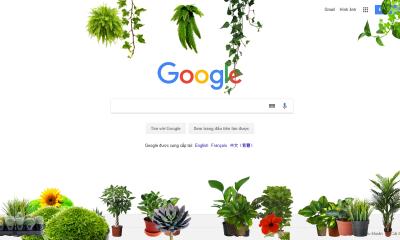 More Plants 400x240 - Ngắm cây xanh trên mọi trang web bạn truy cập