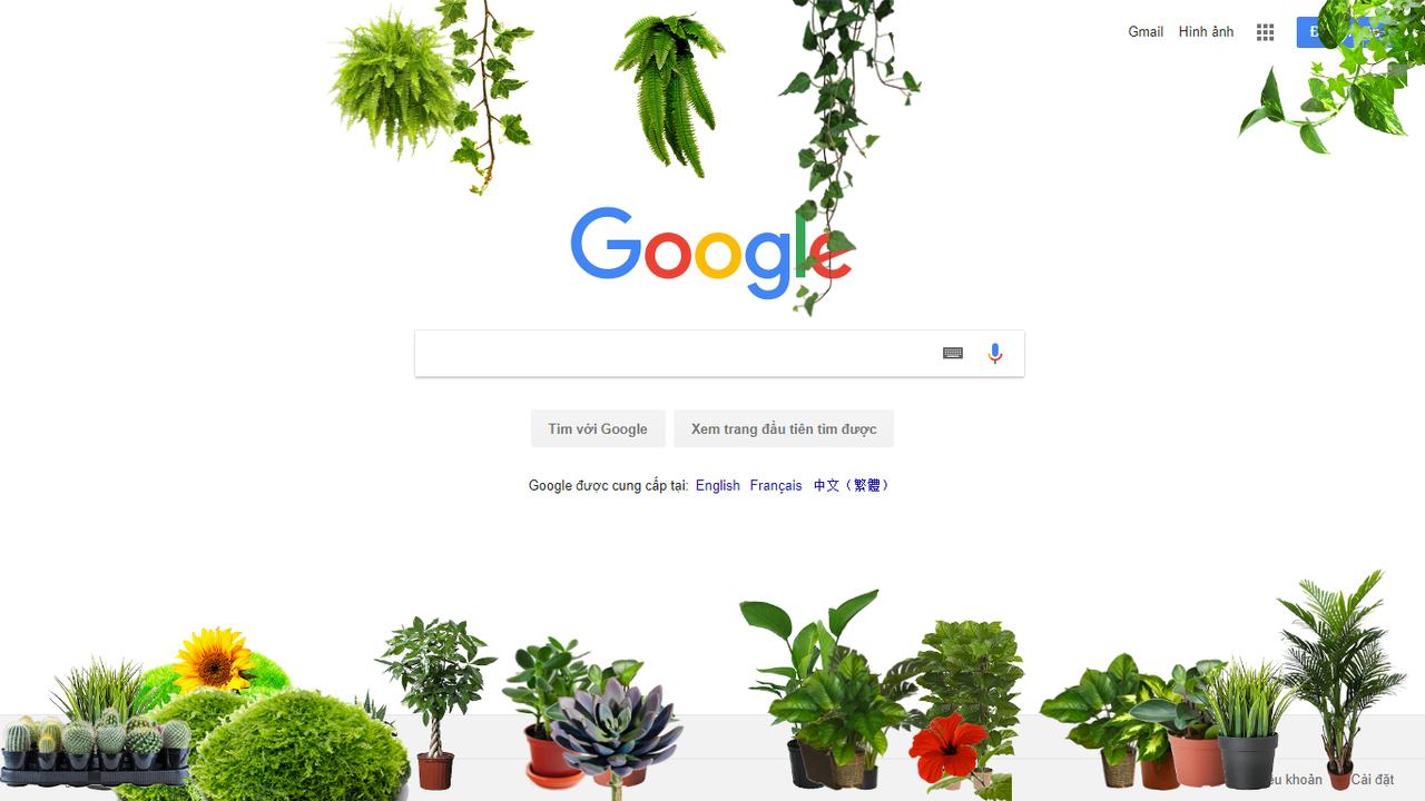 More Plants - Ngắm cây xanh trên mọi trang web bạn truy cập