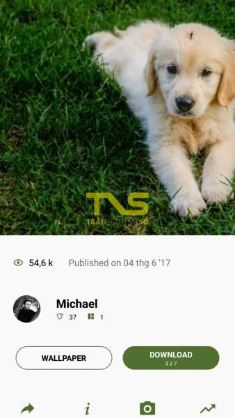 Screenshot 20180927 110912 338x600 - Tải ảnh Unsplash trên Android với 3 ứng dụng mới nhất