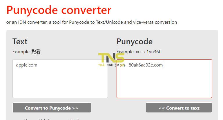 apple punnycode - Mẹo nhỏ nhận diện một tên miền punnycode giả mạo
