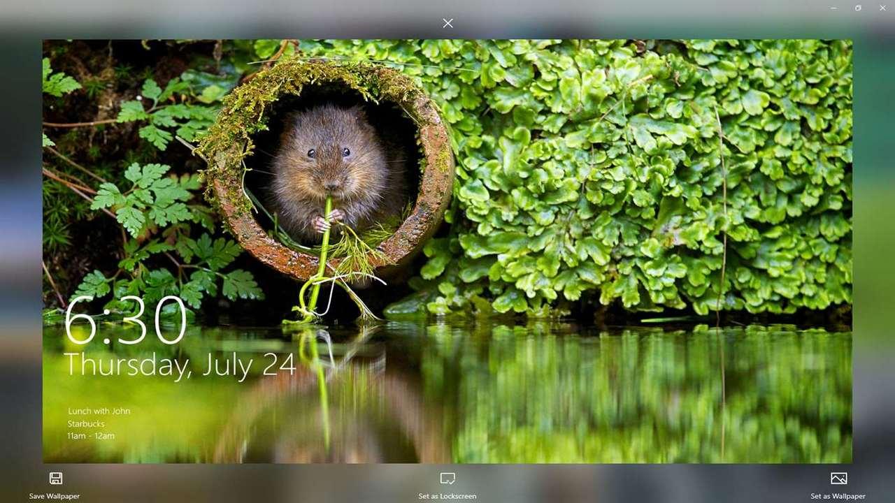 SPOTLIGHTS WALLPAPERS featured - Tải hình ảnh Spotlight trên Windows 10 với SPOTLIGHTS WALLPAPERS