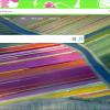 Cài theme Chrome vào ME Chromium 100x100 - Thêm cách cài đặt, gỡ bỏ theme Chrome trên Microsoft Edge Chromium