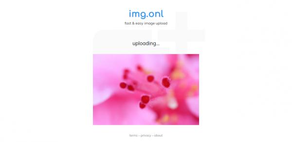 2019 05 13 15 47 01 600x291 - img.onl: Dịch vụ lưu trữ, chia sẻ ảnh miễn phí mới nhất