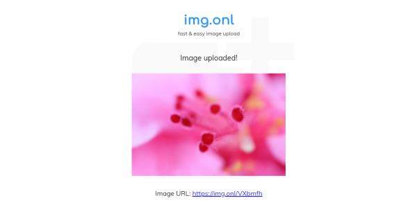 2019 05 13 15 48 30 600x295 - img.onl: Dịch vụ lưu trữ, chia sẻ ảnh miễn phí mới nhất