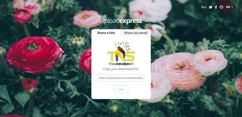 2019 05 29 17 22 47 800x388 - Dùng upload.express chia sẻ file tự hủy miễn phí