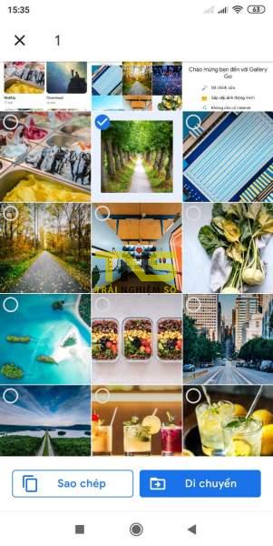 Screenshot 2019 07 27 15 35 36 097 com.google.android.apps .photosgo 1 301x600 - Cách dùng Gallery Go để quản lý ảnh, video trên Android