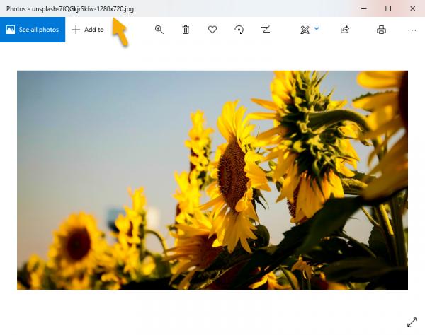2019 09 16 15 46 50 600x474 - Tải ảnh Unsplash trên Chrome theo kích thước bạn muốn