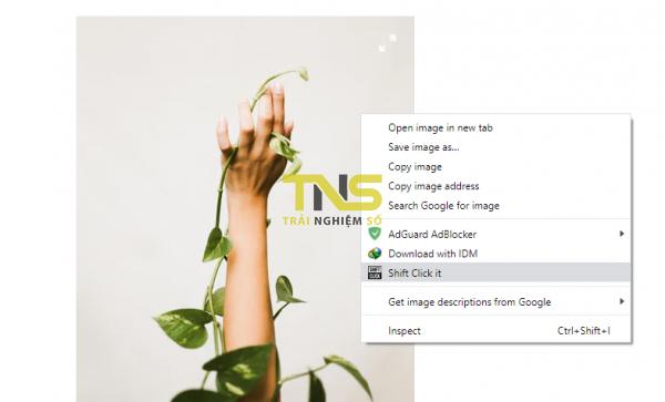 2019 11 27 16 49 26 600x363 - Tạo trang chia sẻ hình ảnh bất kỳ trên Chrome