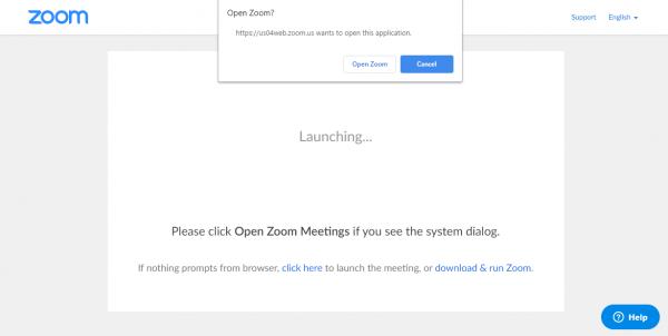 19 thủ thuật Zoom rất hay để học và làm việc online 28