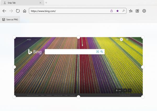 Swift Browser: Trình duyệt UWP siêu xịn hỗ trợ extension cho Windows 10 13