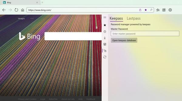 Swift Browser: Trình duyệt UWP siêu xịn hỗ trợ extension cho Windows 10 17