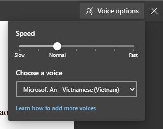 Cách thêm giọng đọc tiếng Việt vào Windows 10 3