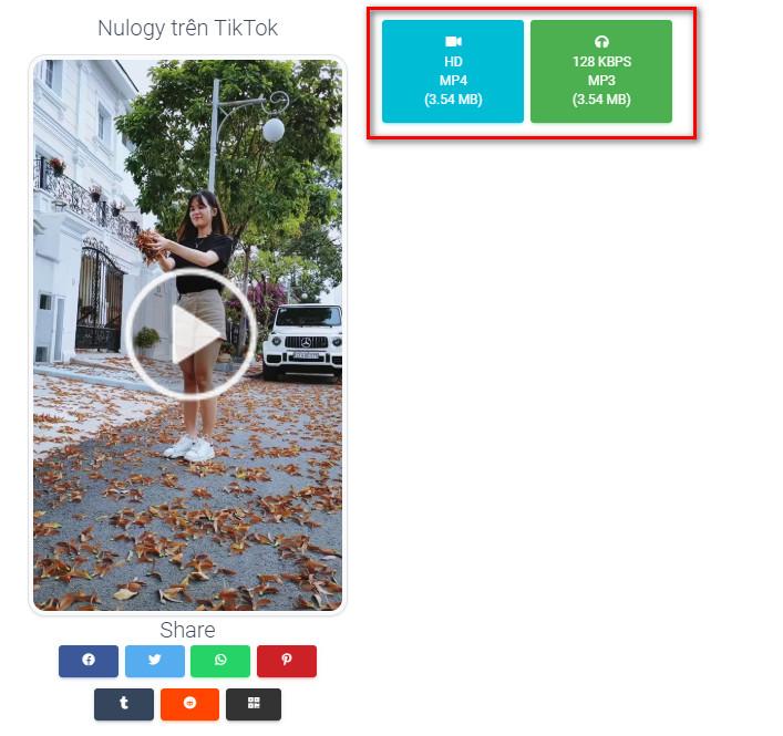 tiktok no watermark 3 - Cách tải video Tiktok không dính watermark
