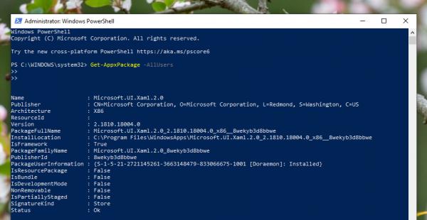 Cách sửa lỗi không cài đặt được app trên Microsoft Store 6