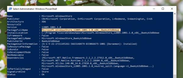 Cách sửa lỗi không cài đặt được app trên Microsoft Store 7