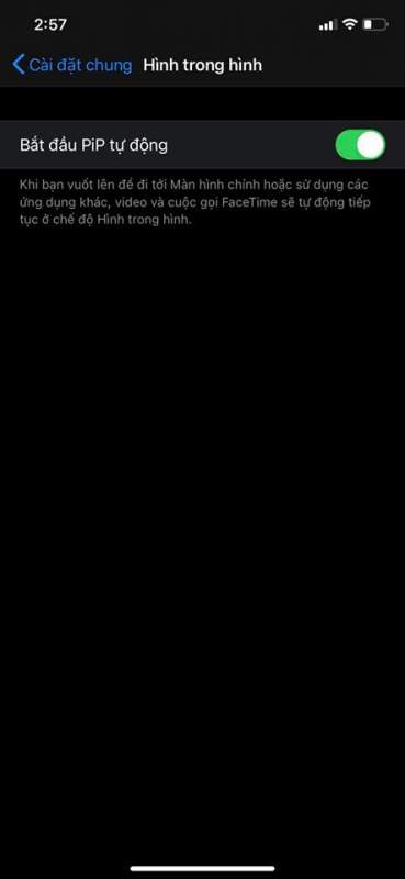 Chế độ Hình trong Hình (PiP Mode) trên iOS 14 hoạt động thế nào? 6
