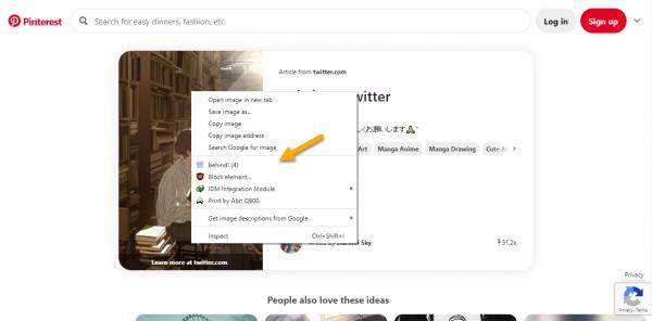 Cách tải hình ảnh bị chặn trên trang web hay sau pop-up 2