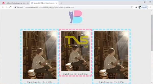 Cách tải hình ảnh bị chặn trên trang web hay sau pop-up 3