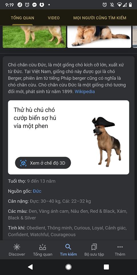 Google bổ sung động vật 3D mới cho Halloween 2