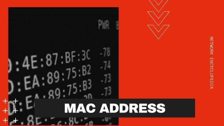 Technitium MAC Address Changer: thay đổi địa chỉ MAC dễ dàng 25