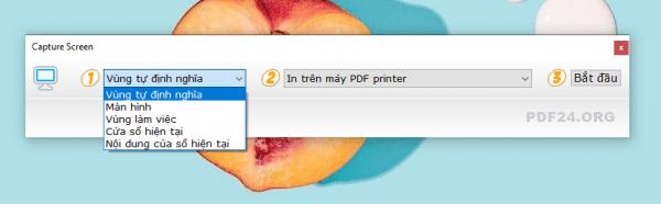 Cách chỉnh sửa PDF trên Windows bằng phần mềm PDF24 28