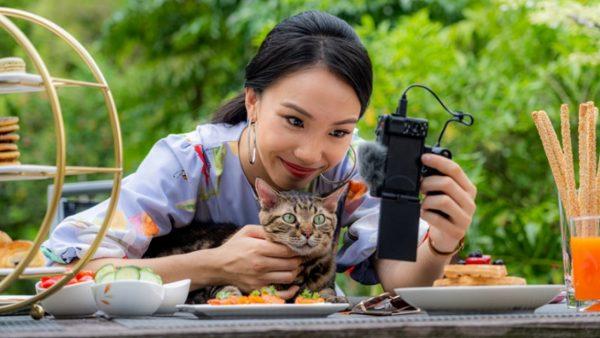 Pawgraphy 5.5: Ngày hội nhiếp ảnh và quay phim thú cưng